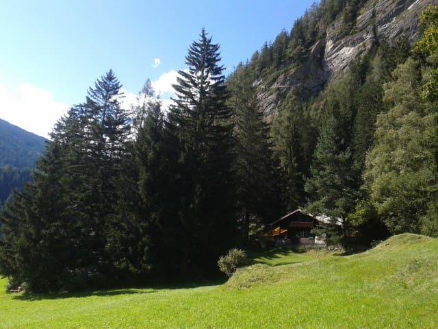 Im Hintergrund sieht man die Stafflacher Wand mit dem 2012 gebauten Klettersteig, der durch seine südseitige Lage fast das ganze Jahr begehbar ist und tolle Tief- und Weitblicke bietet. Rechts im Wald gibt es noch eine weitere Hütte.  ---   In the background you can see the 'Stafflacher rock' with the via ferrata.  On the right in the  forest is a second cottage.