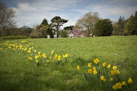 Parc-Le-Breos (Family Room for 4) - Penmaen - Bed & Breakfast
