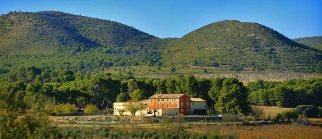 Espectacular Villa, Finca Ecológica