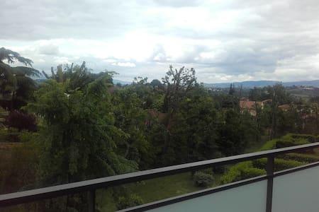 Appartement au calme sud de Lyon - Millery