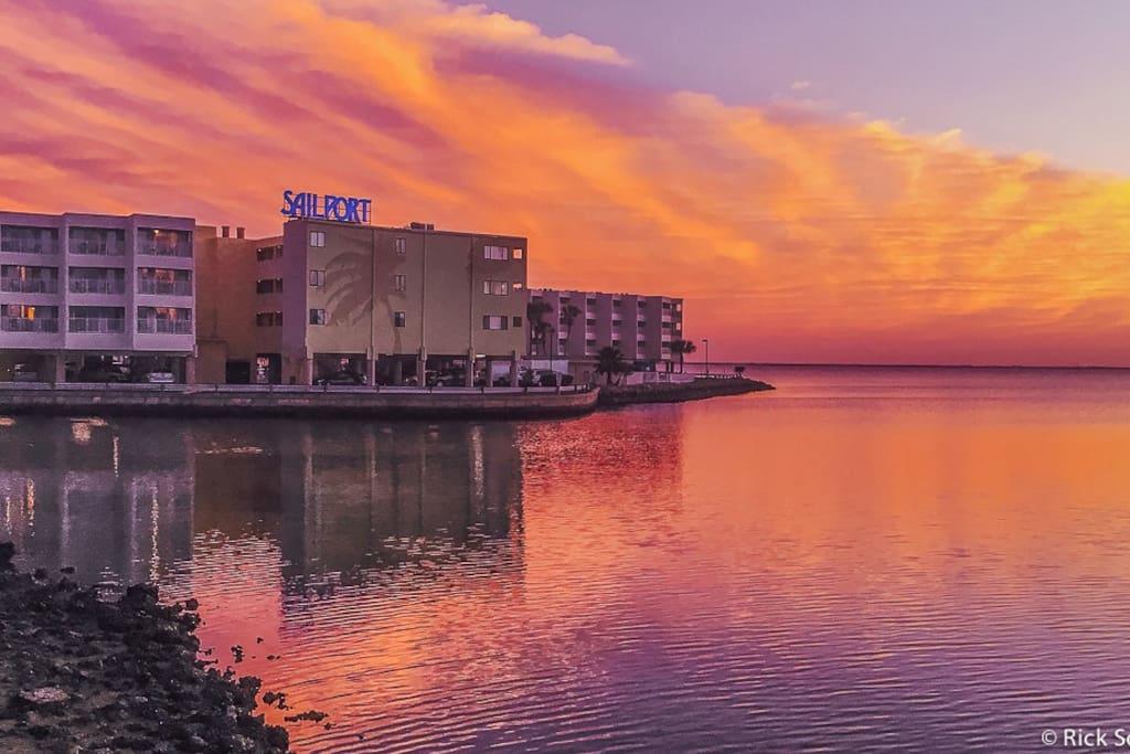 Welcome to Sailport Waterfront Suites and Suite #316!  It's Tampa's hidden gem!!