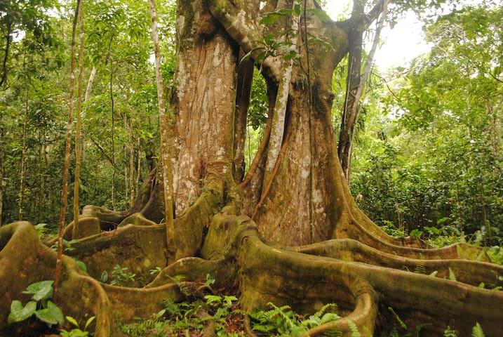 El Escondite - Reserva Natural