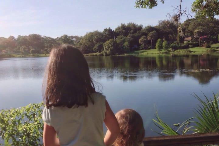 Lakefront Sanctuary 2 in North Orlando