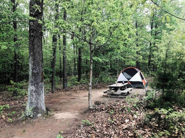 Kip's Primitive Tent Camping- 4 min's to river
