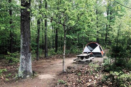 Kip's Primitive & Private Tent Camping
