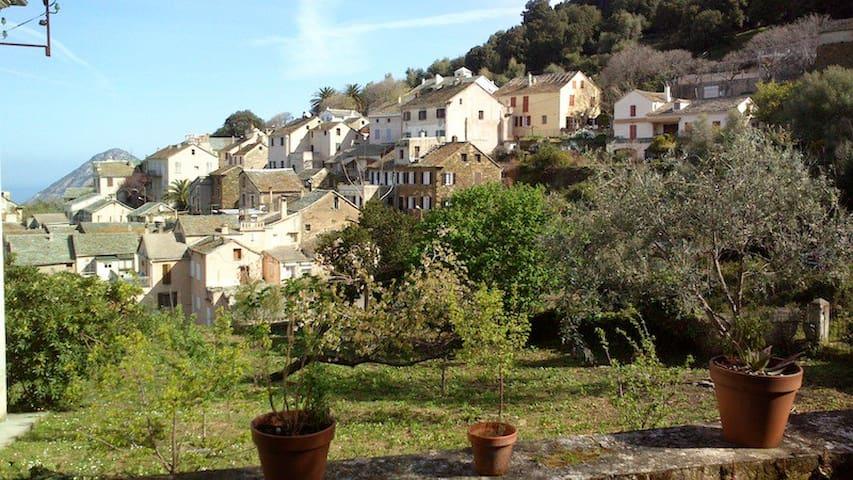 Le Clos Fleuri - Canari - House