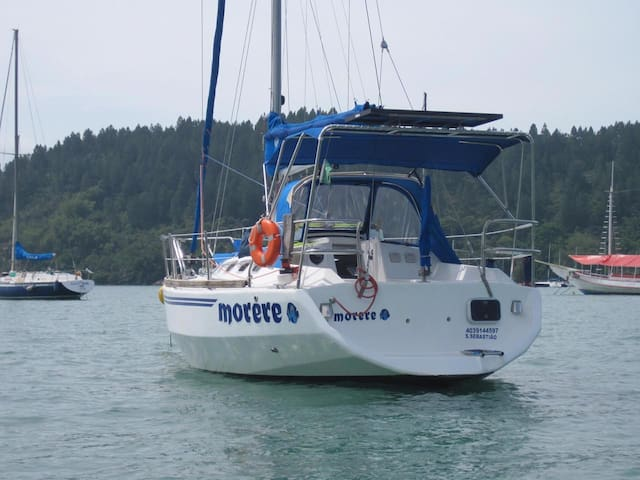 Day Charter in a Sailboat