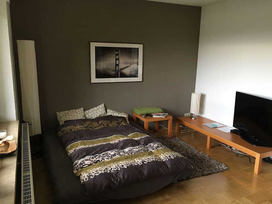 Possbility for 2nd bed (pull-out couch) in living room