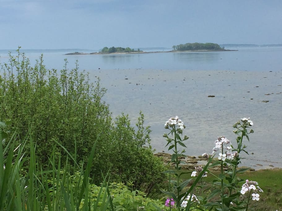 The view of Casco Bay at the end of the street. Flalmouth Flats is a tidal area minutes from Portand, Maine