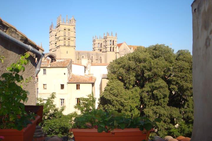 Grande chambre indépendante avec terrasse - Montpellier - Lejlighed