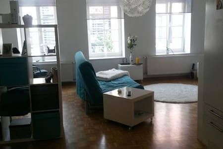 Gemütliche 1 Zimmer Wohnung Zentral - Flensburg - Appartement