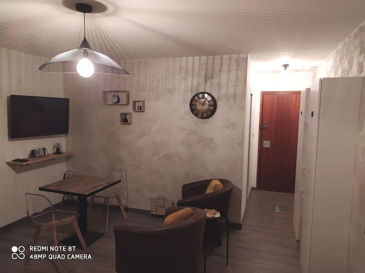 Studio entièrement rénové proche centre