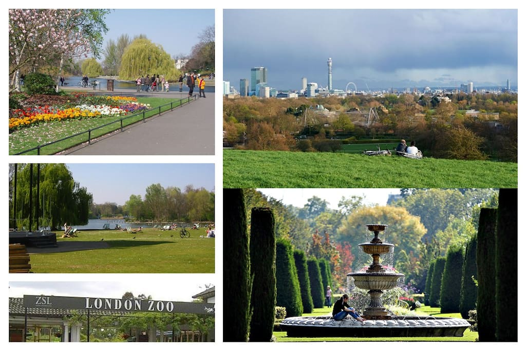 Regents Park, Primrose Hill and London Zoo a short walk away