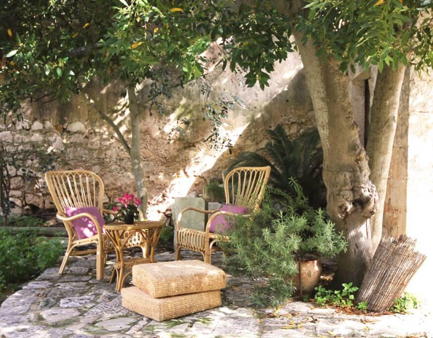 L'alloro custodisce le sedute al fresco.