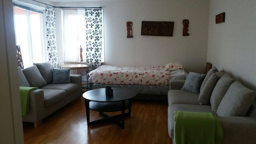 Spacious Apartment fully furnished. 25min to city