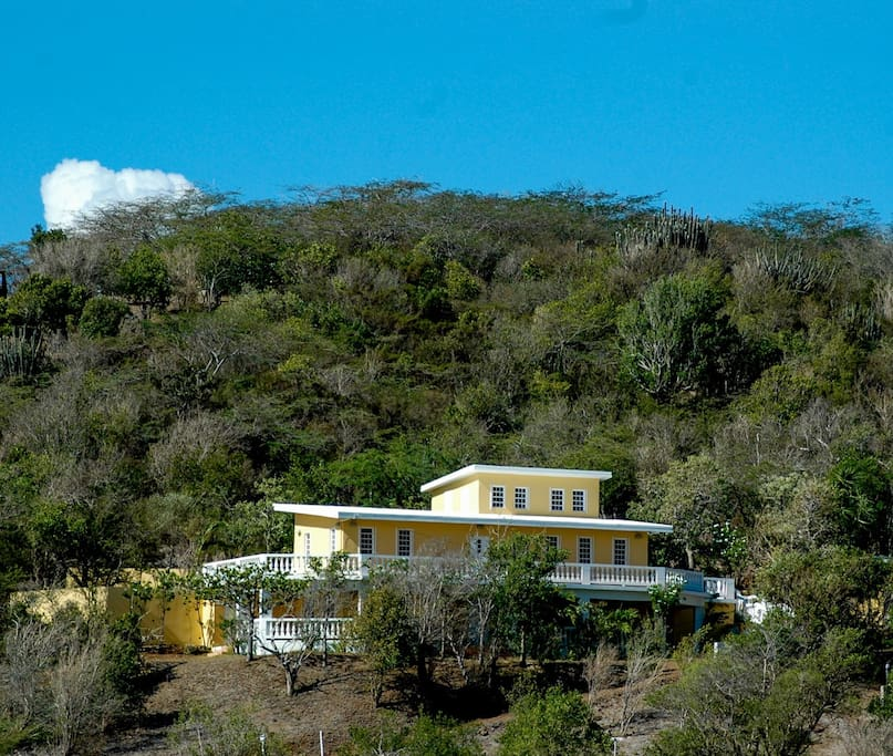 View of our hillside home and part of the land from across the valley.