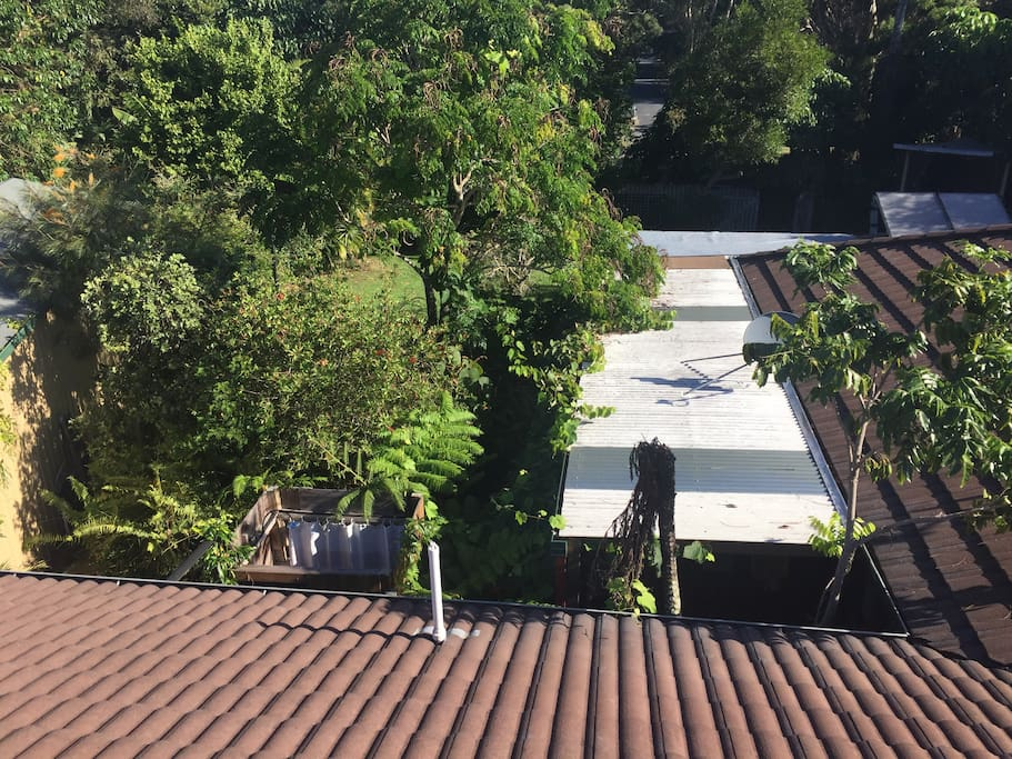 View from roof on outdoor shower and backyard