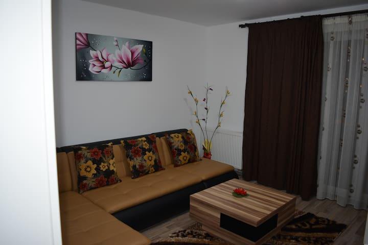 Classic Studio - Brașov - Lägenhet
