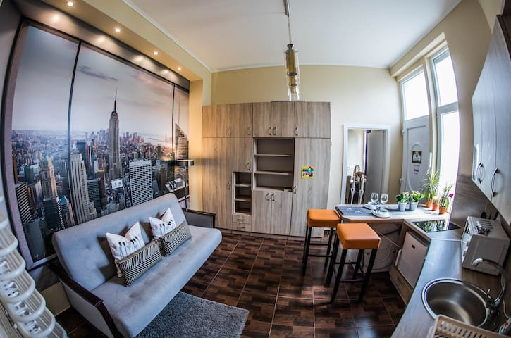 Central Blaha Apartment