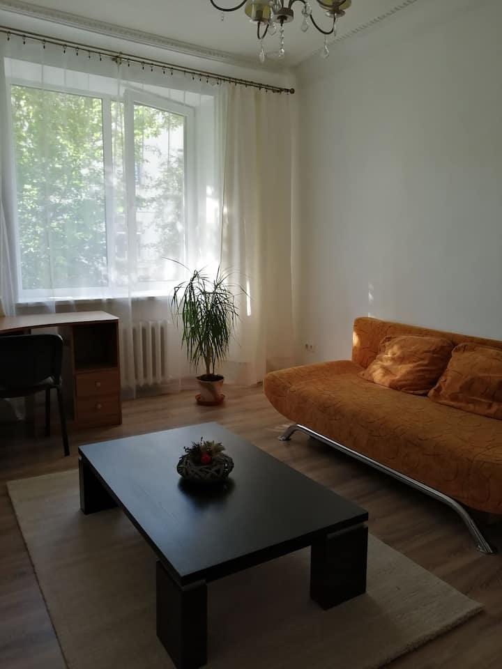 Cozy flat near Pažaislis monastery
