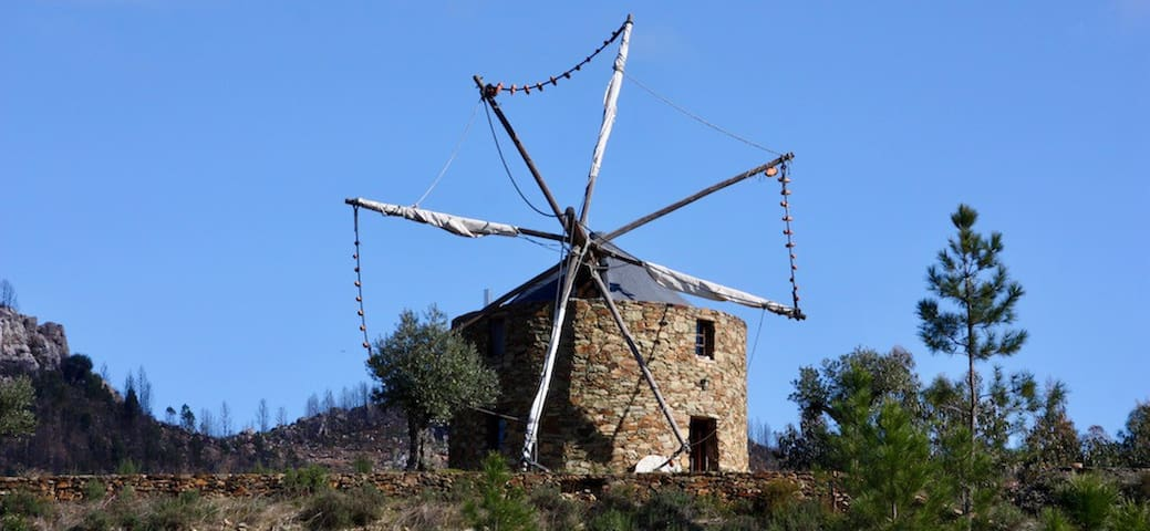 A beautiful windmill in natural surroundings