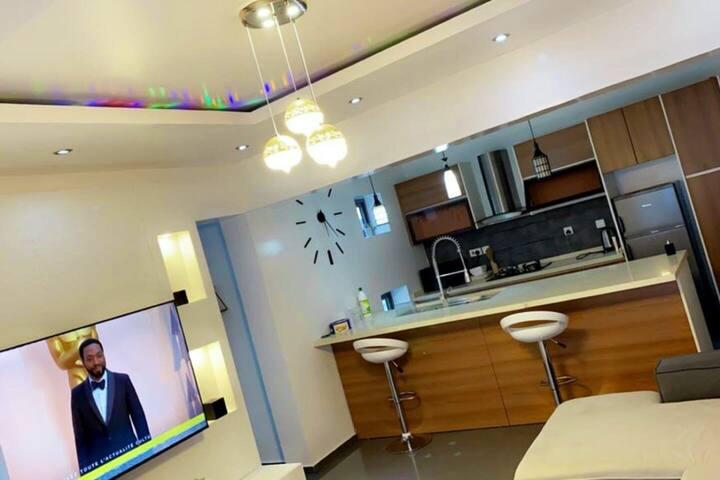 Luxury modern one bedroom apartment