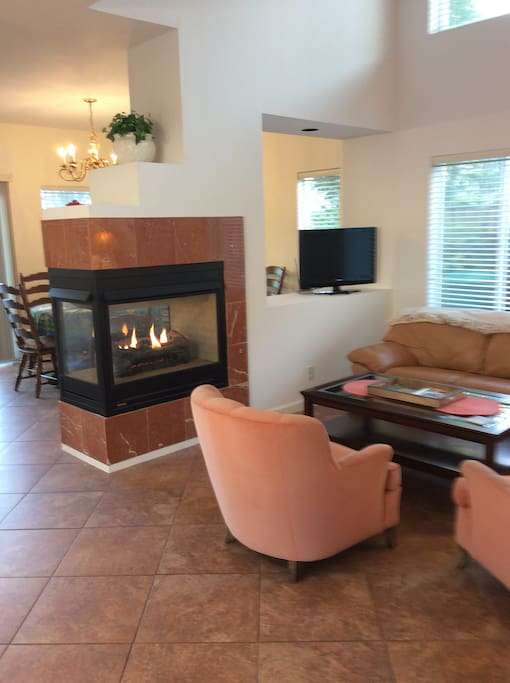 Gas Fireplace in living room.