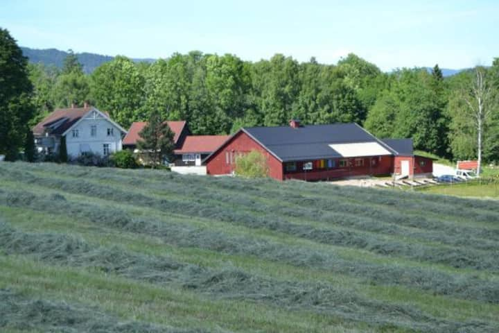 Gårdsbruk i Lier nær Drammen.