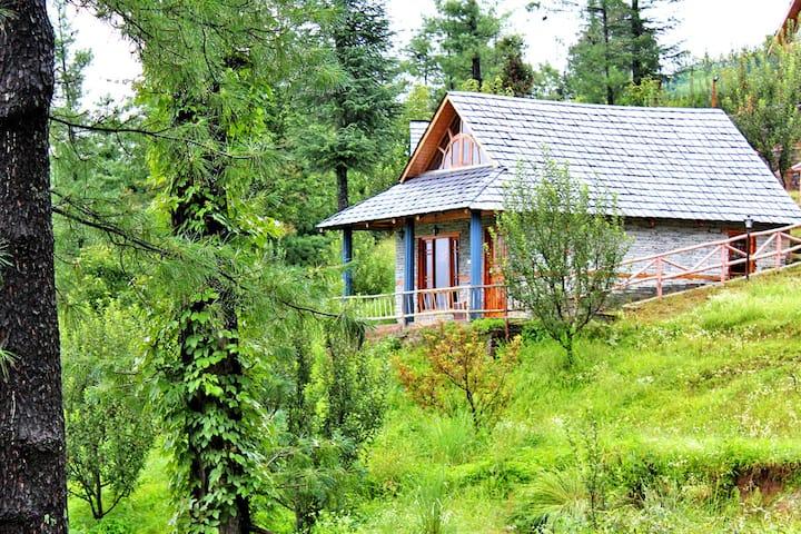 Walnut Wood Cottage | Peaceful Retreat |Apple Farm