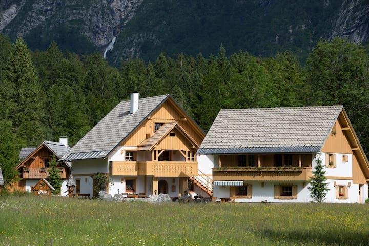 ALPIK - A1 - Family One - Bedroom - 2-4 Persons - Bohinjsko jezero - Apartment