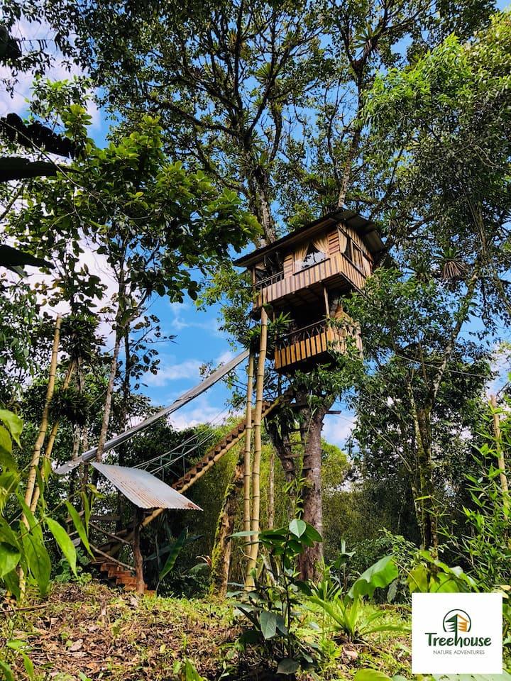Treehouse-Casa del árbol.  Suite, 2 pers. Mindo.