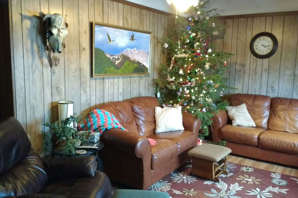Our living room, where guests can feel free to hang out, watch, TV, or watch the snow fall outside!