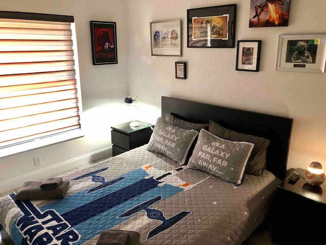 Themed Modern Star Wars Queen Room Near Disney