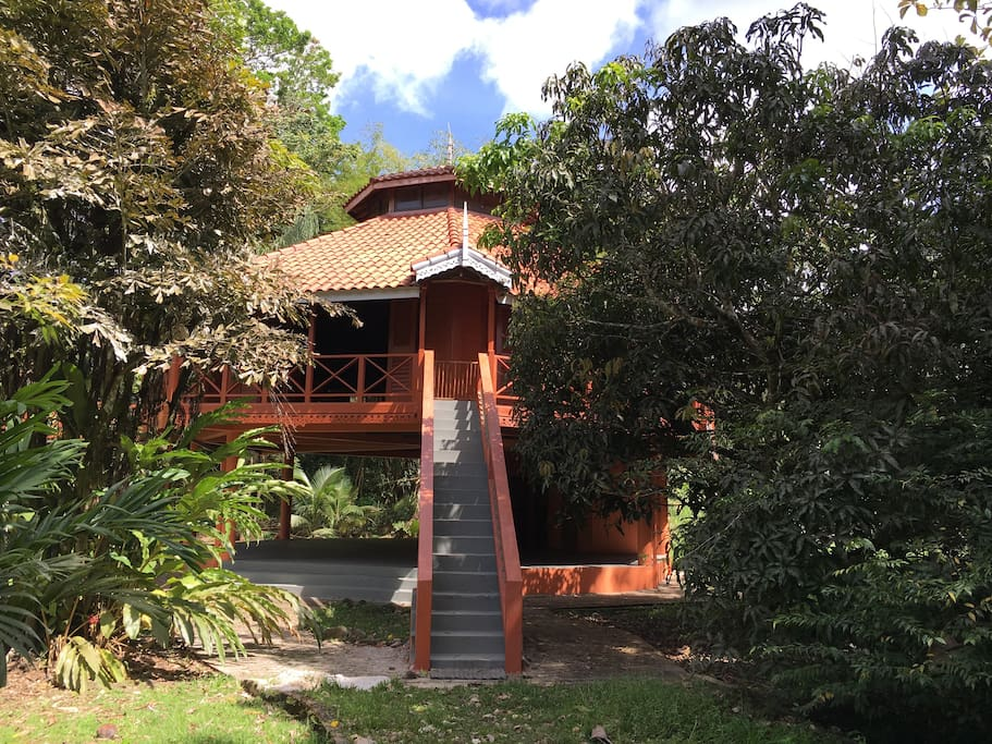 Beautiful treehouse in rainforest - Treehouses for Rent in Grande Riviere, Sangre Grande, Trinidad and Tobago