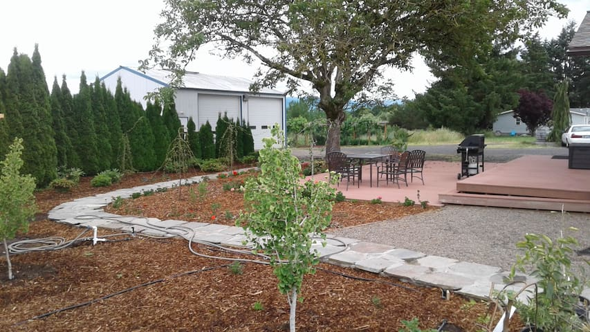 1152-square-foot deck with gas grill, table and seating for six, shade from our ancient English walnut tree, and fresh landscaping -- this is your private domain during your stay.