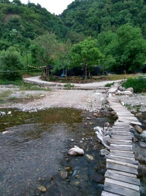 房前弯弯的小河和小桥