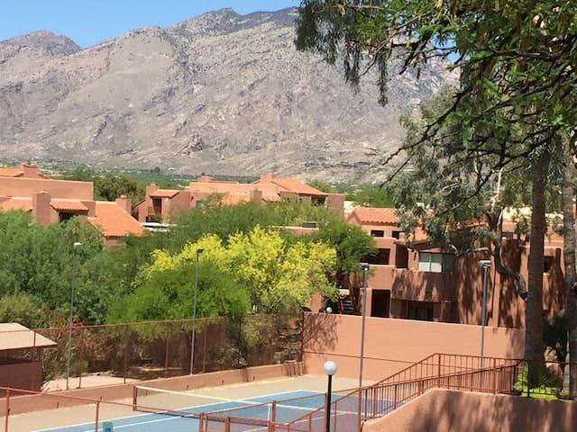 Beautiful Mountain View in Ventana Vista