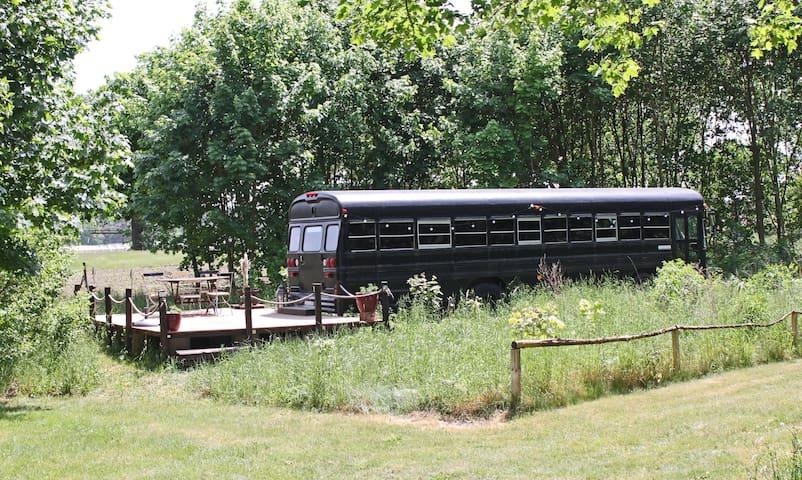 Butch The Bus - Auszeit im Schulbus - Steinreich