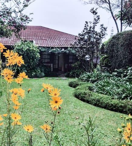Villa Alamanda. Perfect when you need small villa