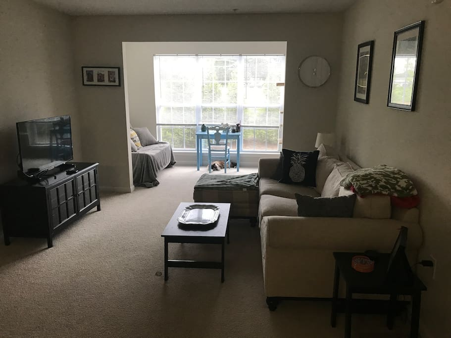 Living/Sun Room