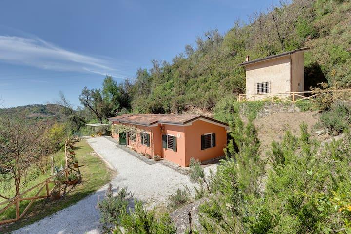 Villa nearby Pietrasanta, Versilia