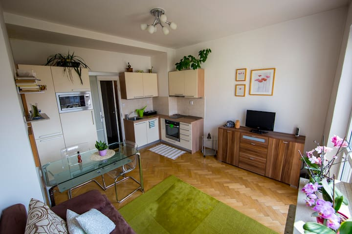 Sunny, cozy apartment with terrace