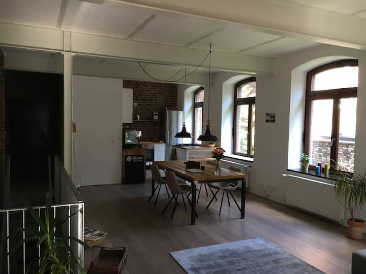 Loft in Nippes