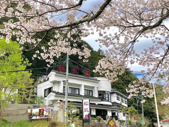 Yuyaonsen湯谷温泉 Japanese Natural Hot Spring Hotel