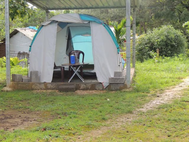 1BR Tent in Dandeli Jungle - Breakfast Included