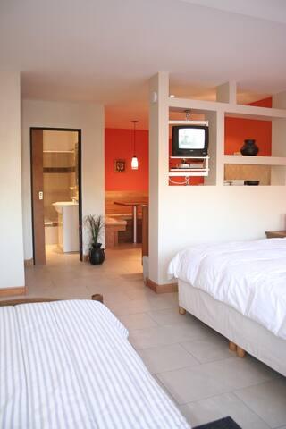 Aires del Beagle Apartments  Studio 705