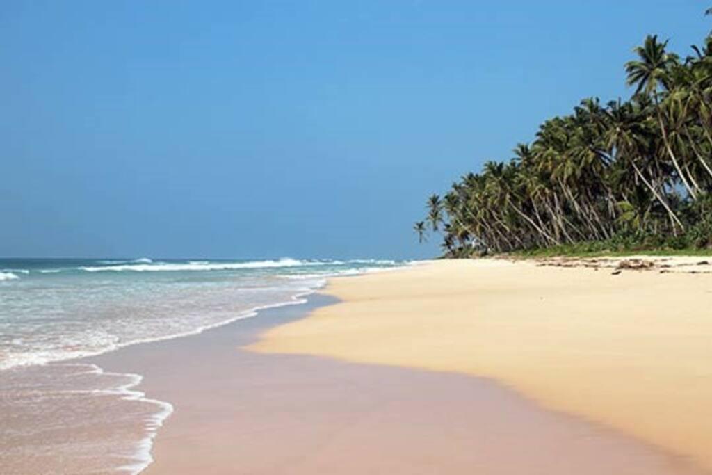Habaraduwa beach