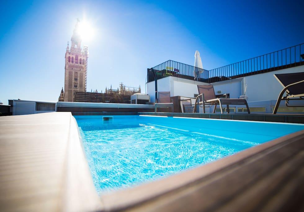 Precioso piso terraza y piscina apartamentos con - Pisos con piscina en madrid ...