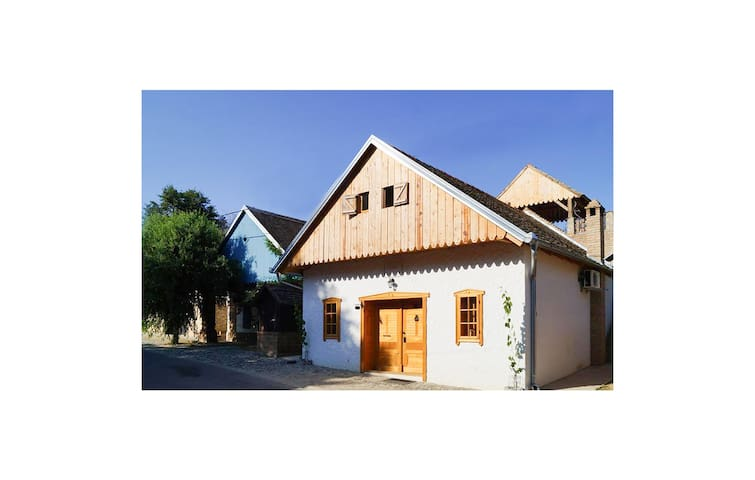Holiday cottage with 4 bedrooms on 111 m² in Zmajevac