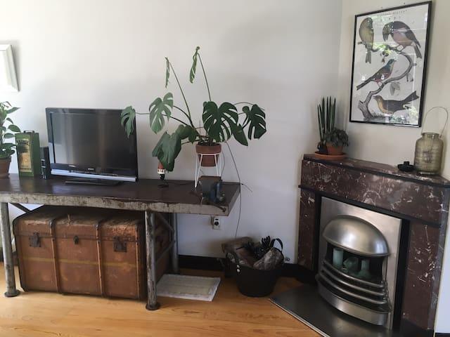 Rustic interior, lots of plants
